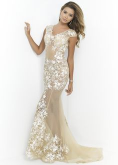 Ivory Lace Sheer Evening Gown - Blush 9976