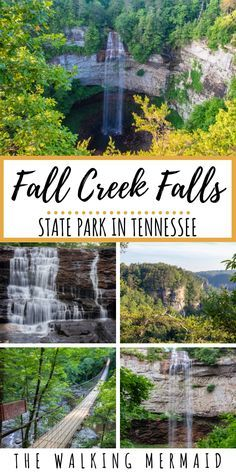 Guide To Fall Creek Falls State Park, Tennessee