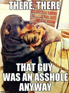 """Other than the """"word"""" - this is SO true - dogs are so trustworthy!"""