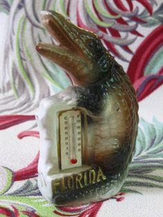 Kitsch Souvenir Vintage Floridian  Alligator Florida Thermometer So Cool Japan. Kitschy Florida Gator Gator