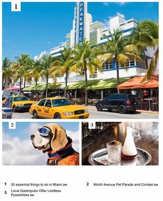 20 Essential Things to do in Miami Worth Avenue Pet Parade and Contest & More http://ift.tt/1s4pS8f http://ift.tt/2mihE4J http://ift.tt/2lBvueM . . . jennifer@thechadcarrollgroup.com (305) 525-6769  http://ift.tt/1XpMFN6 . . . #JennySellsMiami #TheCarrollGroup #DouglasElliman #EllimanSFL #RealtorJenniferGomez - http://ift.tt/1HQJd81