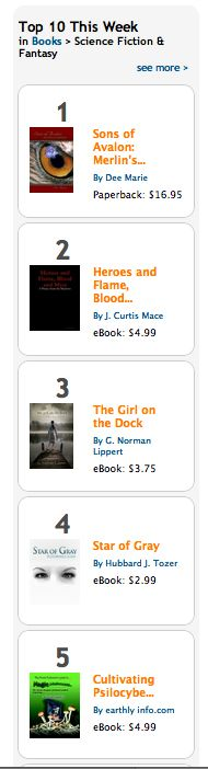 Star of Gray is number four on the top ten list!  It's seriously awesome!!  A MUST read!  http://hubbardjtozer.com/2012/06/15/top-ten-baby/