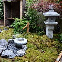 #jardinsjardin Instagram tagged photos - Pikore