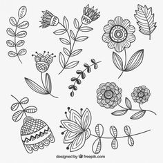 Baixe Entregue As Flores Desenhadas gratuitamente Doodle Art, Doodle Frames, Doodle Drawings, Embroidery Patterns, Hand Embroidery, Flower Embroidery, Botanical Line Drawing, Hand Drawn Flowers, Painted Flowers