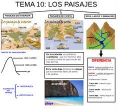 Spanish Immersion, Third Grade, Social Studies, Study, Science, Teaching, Education, History, School