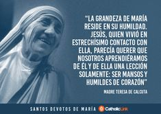 10 frases extraordinariasde santos marianos Amor Quotes, Life Quotes, Mother Teresa Quotes, Tips To Be Happy, Saint Quotes, Catholic Quotes, Catholic Saints, Roman Catholic, Humility