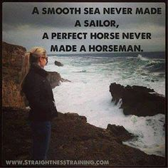 a perfect horse never made a horseman