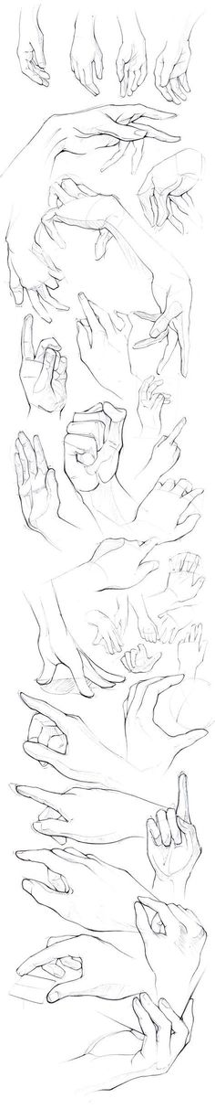 How to draw hands - Drawing reference - sketches - pose reference of human anatomy Hand Drawing Reference, Art Reference Poses, Anatomy Reference, Design Reference, Drawing Poses, Drawing Tips, Drawing Sketches, Drawing Hands, Hand Drawings