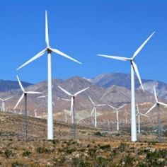 Wind farm around Palm Springs, CA. Would love to go...have friends who live in the area.