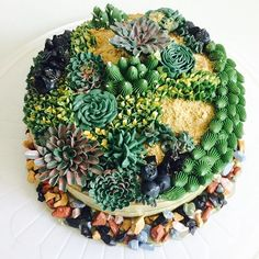 This birthday cake is inspired by my mom's love for green, plants, flowers and gardening. Succulents are made out of buttercream. Cake flavour: matcha green tea. Happy Birthday Mamma! Love you with all my heart.  #sweetlouisakeo #bakedwithlove . . . . . . #secretgarden #garden #terrarium #succulents #greenfinger #happybirthday #love #family #cakeart #cakedecorating #cakestagram #cakes #cakeboss #ibakestuff #custom #fun #cute #gift #toronto #bakelife #bakery #tagsforlikes #ilovefood #party…