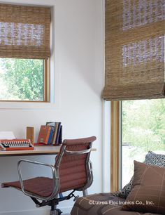 Lutron has a variety of automated shades to fit any size window.  www.automation-design.com