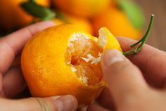 after-reading-this-you-will-never-throw-away-mandarin-peels-again