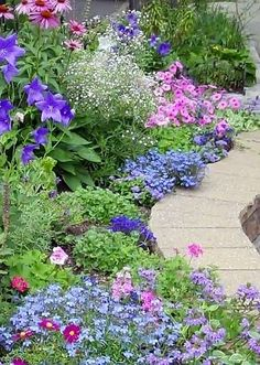 Blue to purples, pinks deep and lighter, with touches of white, and the beauty of green. Nance Maxwell garden.
