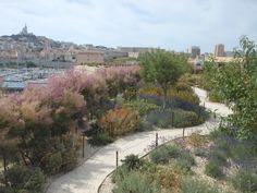 Surplombant le port de Marseille, lieu d'arrivée et de départ des hommes et des plantes, le jardin promenade du Fort Saint-Jean vient prolonger le Musée des Civilisations de l'Europe et de la Méditerranée (MUCEM) et lier Marseille à son histoire.