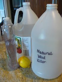 Homemade weed killer. 1/2 gal vinegar, lemon juice, 1 tbsp dish soap. Safe enough for the kids to use! Also, good ideas on getting rid of ants in the comments....