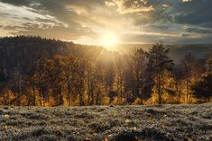 Sundown | This autumn is simply the most beautiful autumn of… | Flickr Gordon Lightfoot, How To Stay Healthy, All About Time, Most Beautiful, Country Roads, Autumn, Sunset, Nice, Outdoor