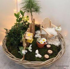Miniature garden - spring-like money gift for the birthday party - Geldgeschenke - Garden Chair Home Grown Vegetables, Birthday Table, Garden Painting, Garden Trees, Milestone Birthdays, Garden Chairs, Craft Shop, Christmas Diy, Miniatures