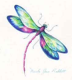 Pencil drawn dragonfly from Nicola's 'River Bank' collection. Initia… Pencil drawn dragonfly from Nicola's 'River Bank' collection. Initial research for new textile designs. Dragonfly Drawing, Dragonfly Painting, Dragonfly Tattoo Design, Dragonfly Art, Butterfly Art, Watercolor Dragonfly Tattoo, Butterflies, Watercolor Tattoos, Dragonfly Tatoos