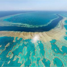 Go Snorkeling in the Great Barrier Reef
