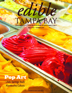 Summer 2014 Tropiccool sorbet, gelato and pops in St. Pete and on the move; kombucha; Ulele restaurant in Tampa. Cool reads and recipes!