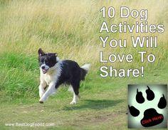 10 dog activities you will love to share http://www.bestdogfoodd.com/dog-activities/