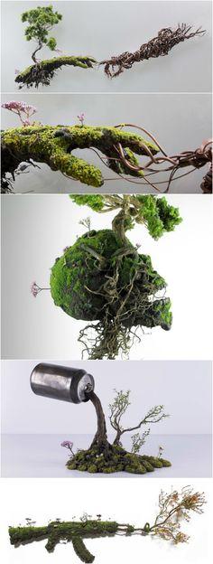 Emeric Chantier Bonsai Art, Bonsai Plants, Bonsai Garden, Moss Plant, Indoor Water Garden, Micro Garden, Hydroponic Gardening, Container Gardening, Inside Garden