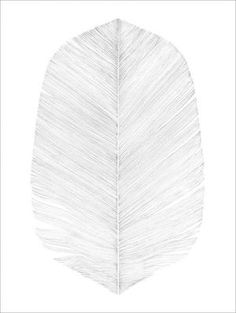 Magdalena Tyboni Feather white, poster 50x70