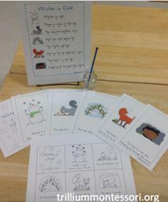 Animals in Winter Unit - Trillium Montessori
