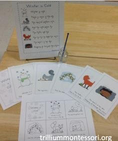 What do animals do in winter?  Simple poem with sequencing cards and booklet