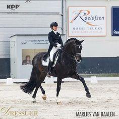 A beautiful photo of our testimonial Marlies van Baalen! #dressage #marliesvanbaalen #kepprotection #beinspired