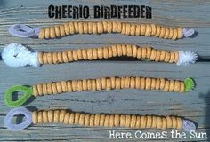 Simple Cheerio bird feeder - easy cub scout activity Harmon Williamson maybe a good one. Cub Scout Crafts, Cub Scout Activities, Earth Day Activities, Toddler Activities, Science Toddlers, Girl Scout Daisy Activities, Nature Activities, Toddler Fun, Science Activities
