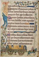 Royal Traveller's Coach from the Luttrel Psalter.