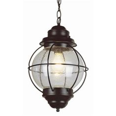 TransGlobe Lighting 1 Light Outdoor Hanging Lantern Finish: Rustic Bronze