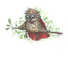 Little owl by Eva Poppink