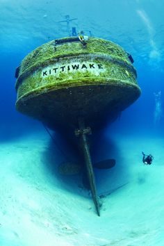 The Best of Grand Cayman in Photos http://www.deepbluediving.org/dive-computer-algorithms/
