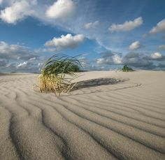The beach of Schiermonnikoog - a Dutch island Noth Holland Waddeneilanden #essenzadiriviera www.varaldocosmetica.it/en