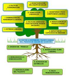 Imagen relacionada Tao, Green Beans, Herbs, Diana, Leadership, Innovative Products, Health, Herb