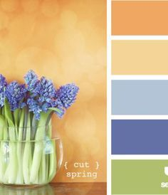 apricot and blue color palette - Google Search