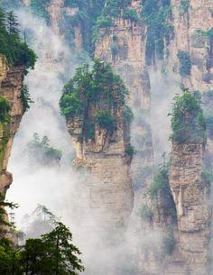 Wulingyuan | Vertical Garden Design