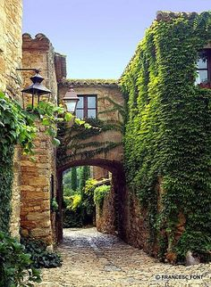 Ivy Arch Peratallada Spain