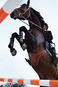 The Horse at Hermès. Photo: Giampaolo Vimercati #Horse #Hermes #Equitation #Leather #Riding
