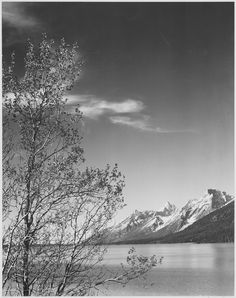 """""""Grand Teton"""" National Park, Wyoming. (vertical orientation)   photographer: Ansel Adams, Ansel Adams Photographs of National Parks and Monuments, documenting the period ca. 1933 – 1942 (pinned by haw-creek.com)"""