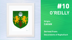 The Top Ten Most Popular Irish Surnames from Painted Clans. Hand painted Irish coat of arms with a modern twist. Irish Coat Of Arms, Irish Roots, Irish Men, Surnames, Most Popular, Top Ten, Hand Painted, Ireland, Graphic Design