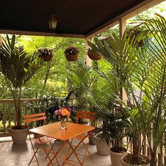 Easy Outdoor Room Idea Private Palms:   Add seclusion to any space with containers of tall grasses or palms. Here, a front porch becomes more intimate with a row of hanging baskets and potted fronds.