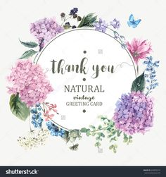 Summer Vintage Floral Greeting Card With Blooming Hydrangea And Garden Flowers, Thank You Botanical Natural Hydrangea Illustration On White In Watercolor Style. - 443850274 : Shutterstock