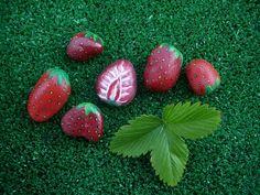 Sbalit si svých šest jahod