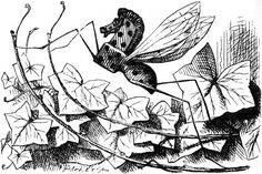 Through The Illustrated Looking Glass: Chapter 3 ~ Looking-Glass Insects