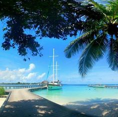 Regram from @instafolix - #kuramathiisland #beautifulmaldives #nature #seaview #sea #bluesea #ocean #blueskies #bl https://t.co/zsWA8DF9wW (via Twitter http://twitter.com/maldivesinpics/status/716089934441025537) - http://ift.tt/1HQJd81