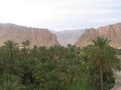 Algérie - El Kantara