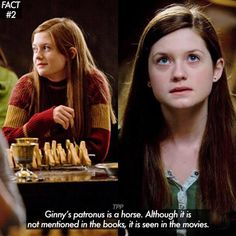 25 Astonishing Harry Potter Facts Will Make Your Day - Swish Today So Ginny's a horse girl. Harry Potter Puns, Harry Potter Wizard, Harry Potter Cast, Harry Potter Theme, Harry Potter Characters, Harry Potter Universal, Harry Potter Hogwarts, Harry Potter World, Dramione